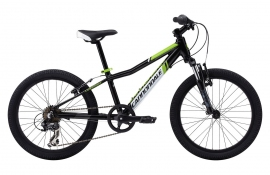 Cannondale Trail 20 (2014)